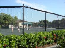 Pelican Bay Tennis