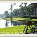 6040 Pelican Bay Blvd #403