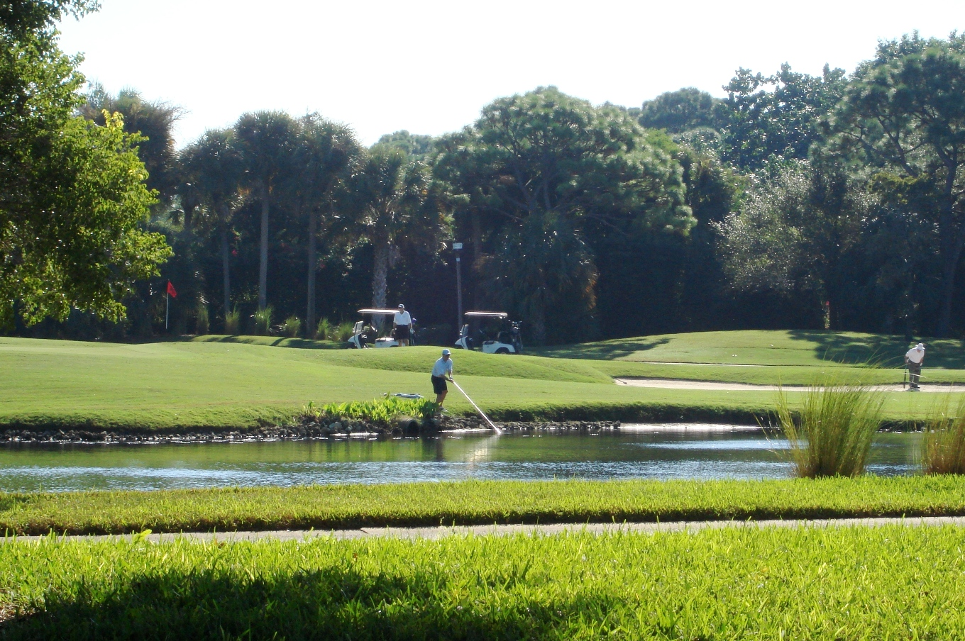 Naples FL - Golf Course in Pelican Bay