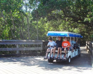 Naples FL – A KID'S GUIDE to PELICAN BAY