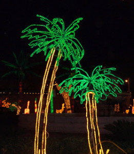 NAPLES (Crhistmas Light Trees)